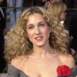 Carrie AKA Sarah Jessica Parker's Curls
