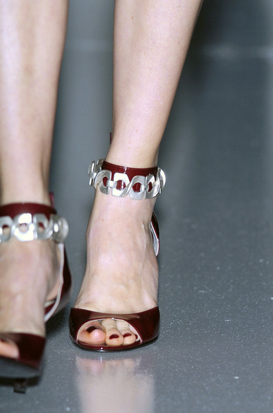 Menichetti at Milan Fall 2005 (Details)