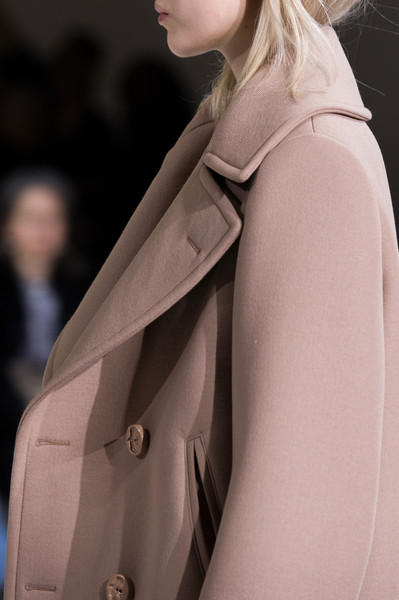 Nina Ricci at Paris Fall 2015 (Details)