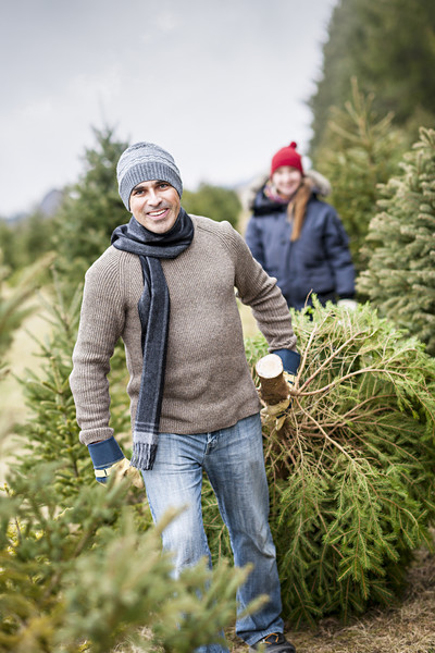 Pick Out Your Christmas Tree Together