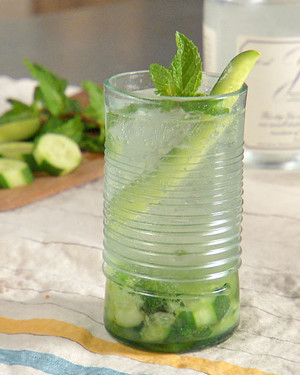 Sparkling Cucumber Mint Gin Tonic