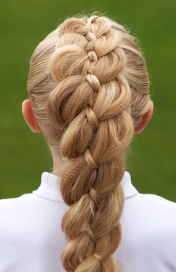 A Textured Dutch Braid.