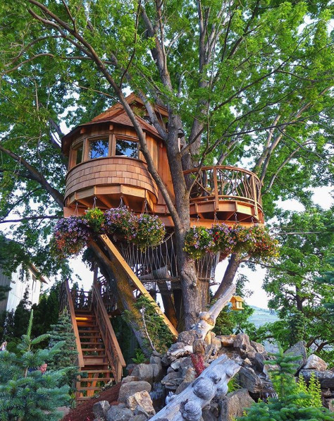 Or A Whimsical Treehouse