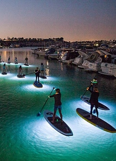 Go Kayaking At Night