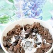 Chocolate Oatmeal Bowl