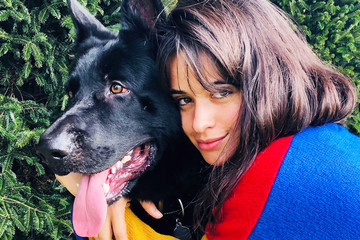 Celebrities With Their Adorable Pets