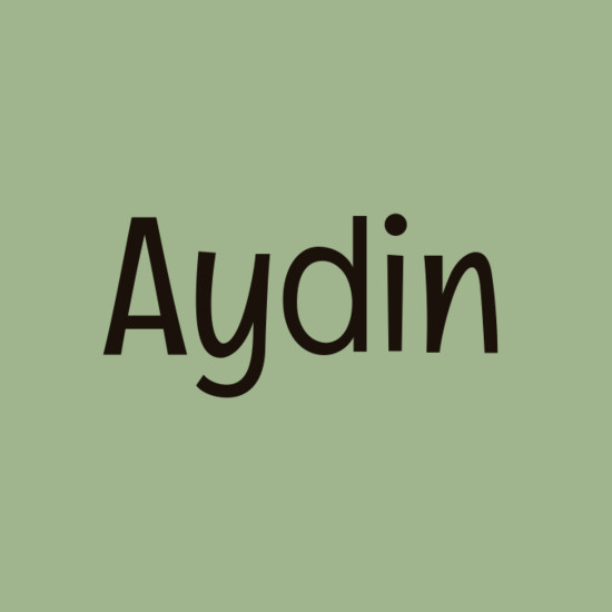 Aydin - Unique Ways To Spell Common Baby Names - Livingly