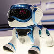2013: Teksta the Robotic Puppy