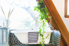Pinterest's Top New Home Trend: Shower Plants