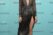 Kendall Jenner Embroidered Dress