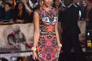 Tamera Foster Print Dress